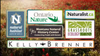 6 Helpful Resources For Anyone Interested In Nature