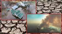 6 Organizations Protecting Nature In Florida