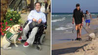 8 Organizations Providing Help And Encouragement To Those With Disabilities