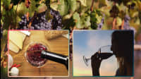 7 American Wine Producers You'll Want On Your Table