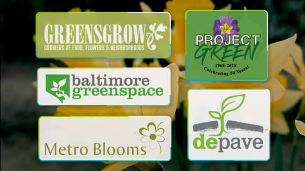 5 Great Groups Protecting & Promoting Urban Green Spaces