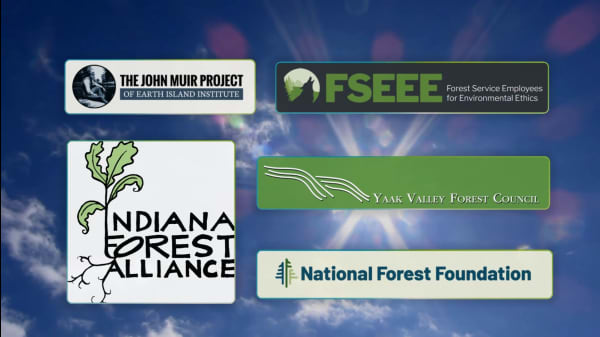 5 Admirable Organizations Protecting & Restoring American Forests