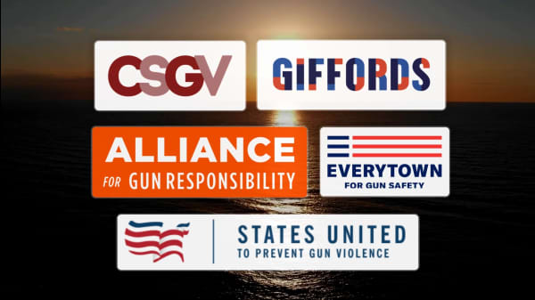 5 Dedicated Organizations Working To End Gun Violence