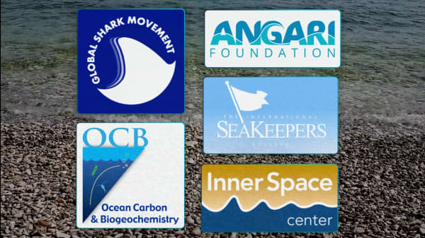 5 Research Organizations Expanding Our Knowledge Of Oceans