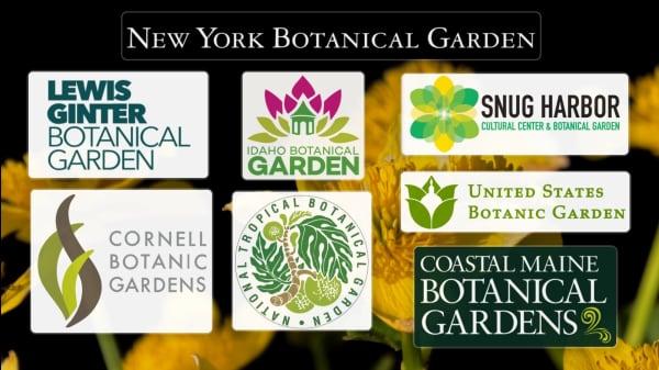 8 Enchanting Botanical Gardens Showcasing Plant Life