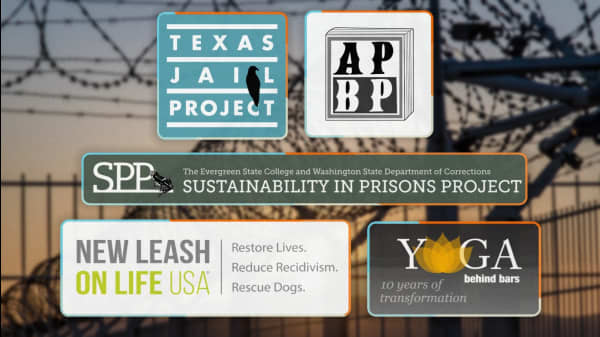 5 Groups Working To Improve The Lives Of Incarcerated People