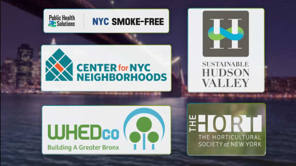 5 Organizations Working To Improve Communities In New York