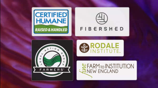 5 Supportive Nonprofits Dedicated To Farming