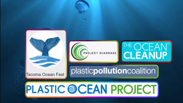 5 Organizations Working To Clean Up The Ocean