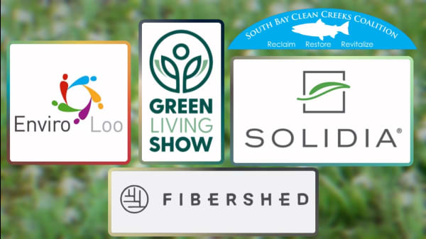 5 Companies & Organizations Working To Protect The Environment