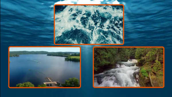 6 Environmental Organizations Studying and Preserving Bodies of Water