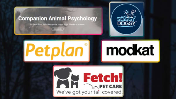 5 Helpful Resources For Pet Owners