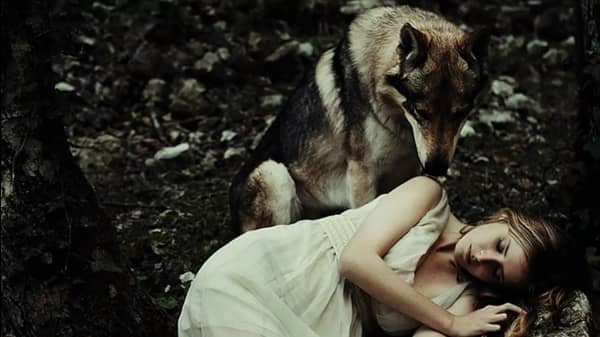 10 Wild Paranormal Romances About Shapeshifters