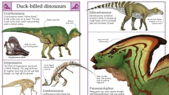 "#7 on our list is ""The Big Book of Dinosaurs,"" another book from DK Publishing that has huge life-like images."