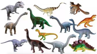 It pairs each kind of dinosaur with short facts that children will easily understand.