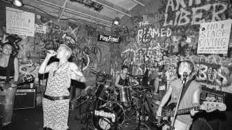 It contains documented events of the origins, and the evolution of the radical feminist punk uprising.