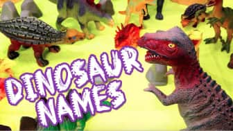 Aside from the informative text about each species, it is also arranged to match each dinosaur with a letter, along with a guide for pronunciation.