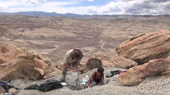 With a hint of drama, it focuses on the struggles of the 19th century paleontologists and explorers throughout their search for bones in the west.