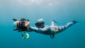 The book provides a lot of tips for both novice and experienced freedivers, and it talks about the proper diving and camera equipment one should use.