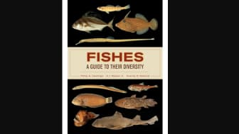 Coming in at #10 is Fishes: A Guide to Their Diversity by Philip Hastings, Harold Jack Walker, and Grantly Galland.
