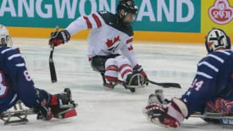 There are 27 sports in the Summer and Winter Paralympics combined, with some competitions broken down into several events.