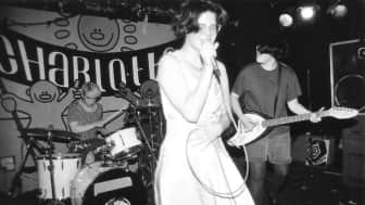 Pioneered by many bands such as Bikini Kill, Sleater-Kinney, Bratmobile, Excuse 17, and Huggy Bear, the movement was mainly associated with causes such as sexism, rape, and domestic abuse.
