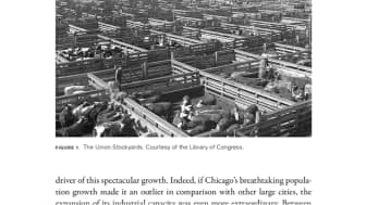It traces the development of Chicago's government, culture, and economy.
