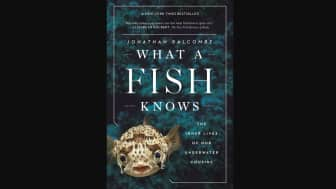 "At #5, we have ""What a Fish Knows: the Inner Lives of Our Underwater Cousins,"" by Jonathan Balcombe, an expert in animal behavior."