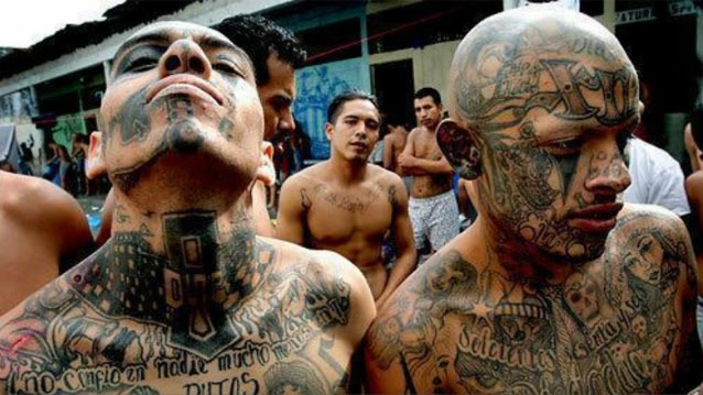 violence in gangs Turmoil in mexico's criminal underworld is intensifying the violence in a valuable border territory.