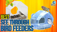 Top 7 See Through Bird Feeders of 2017 | Video Review