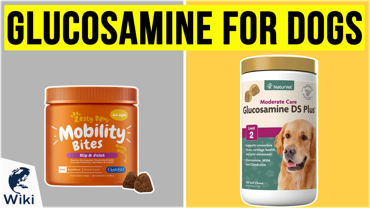 10 Best Glucosamine For Dogs