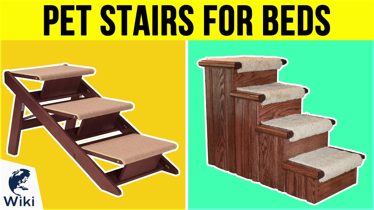 10 Best Pet Stairs For Beds