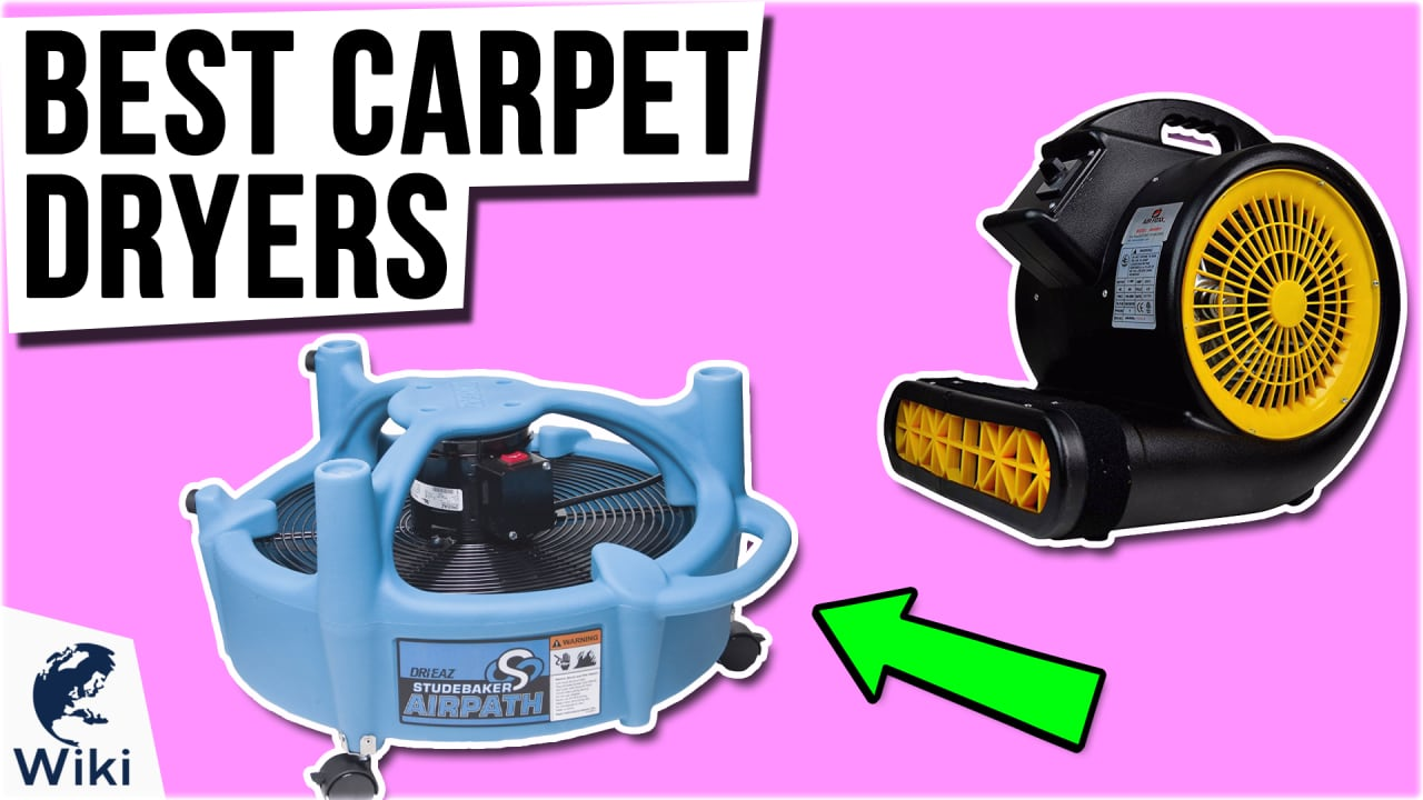 10 Best Carpet Dryers