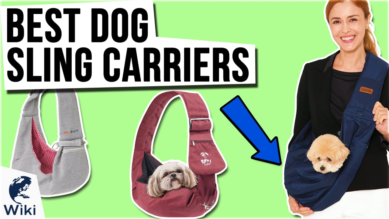 10 Best Dog Sling Carriers