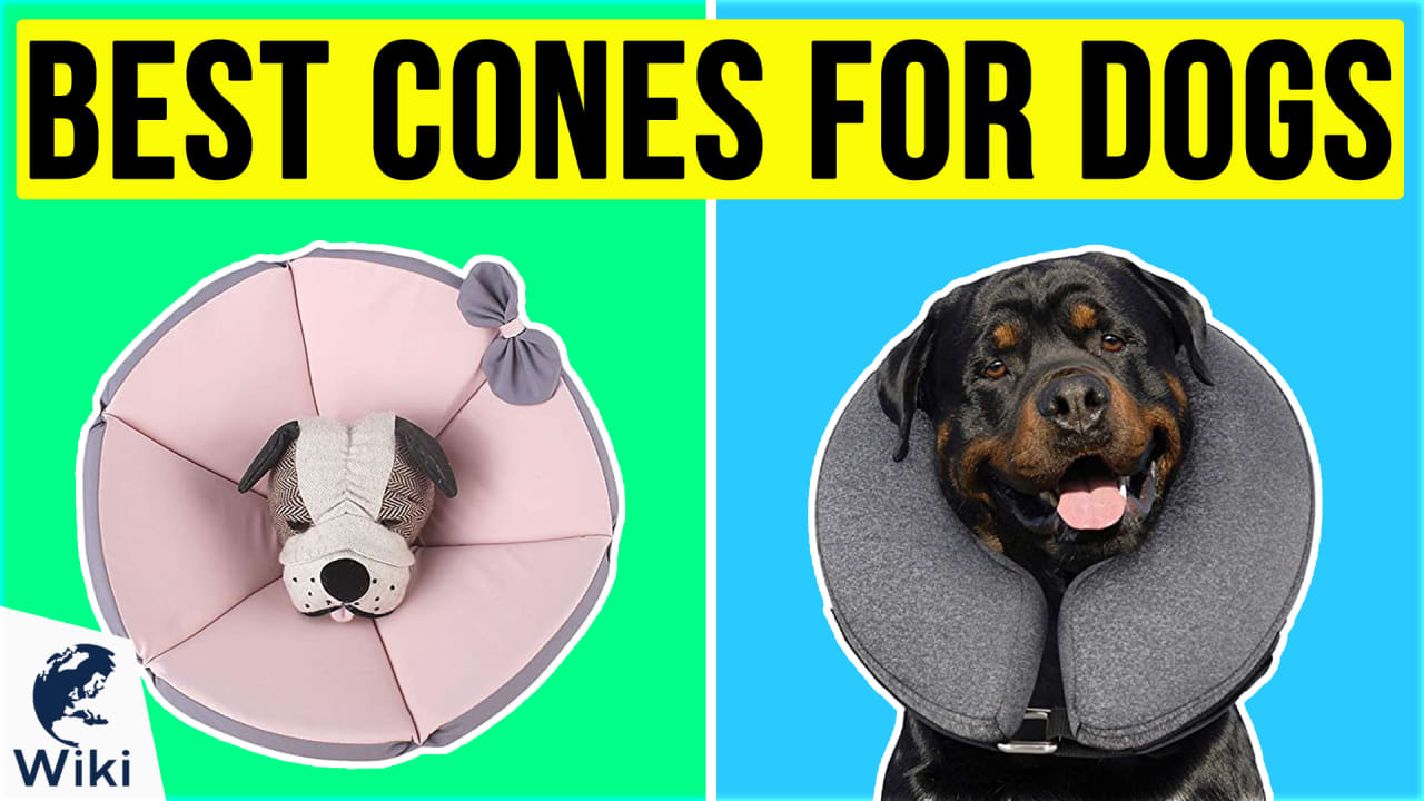 10 Best Cones For Dogs