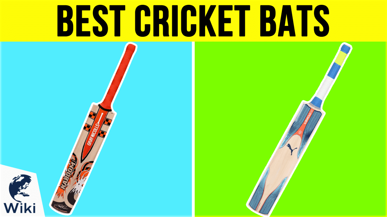 8 Best Cricket Bats