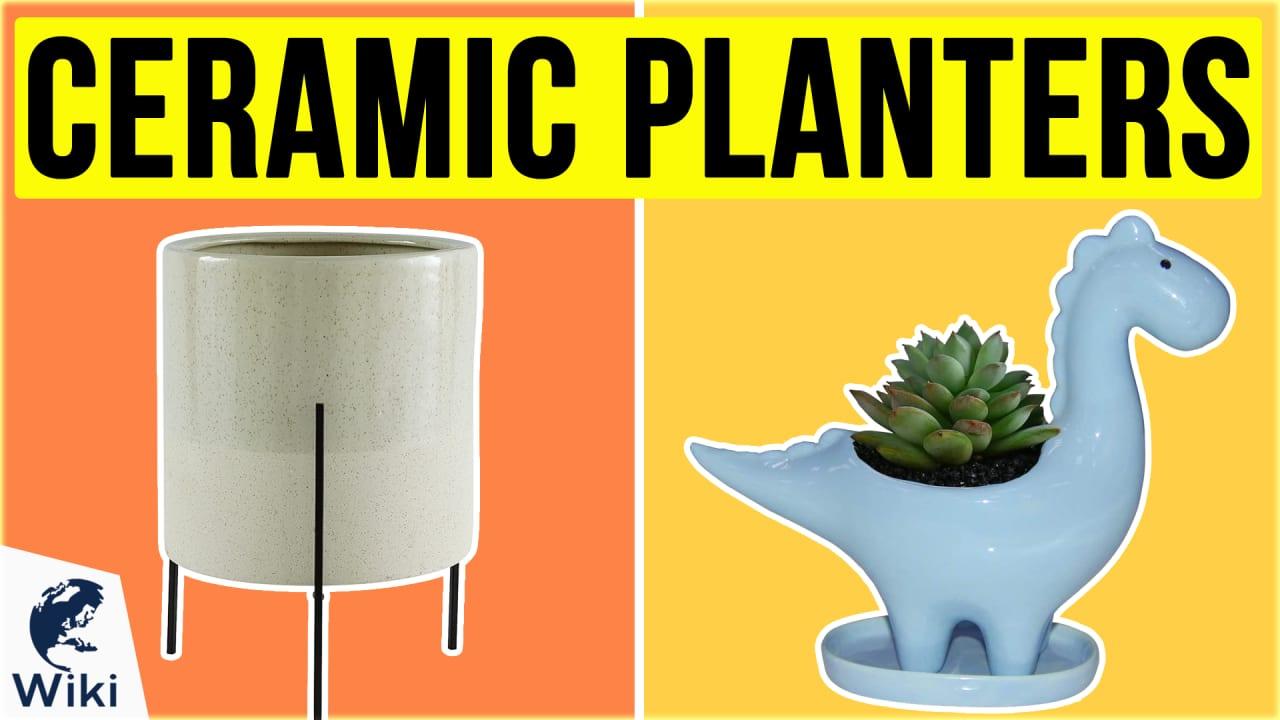 10 Best Ceramic Planters