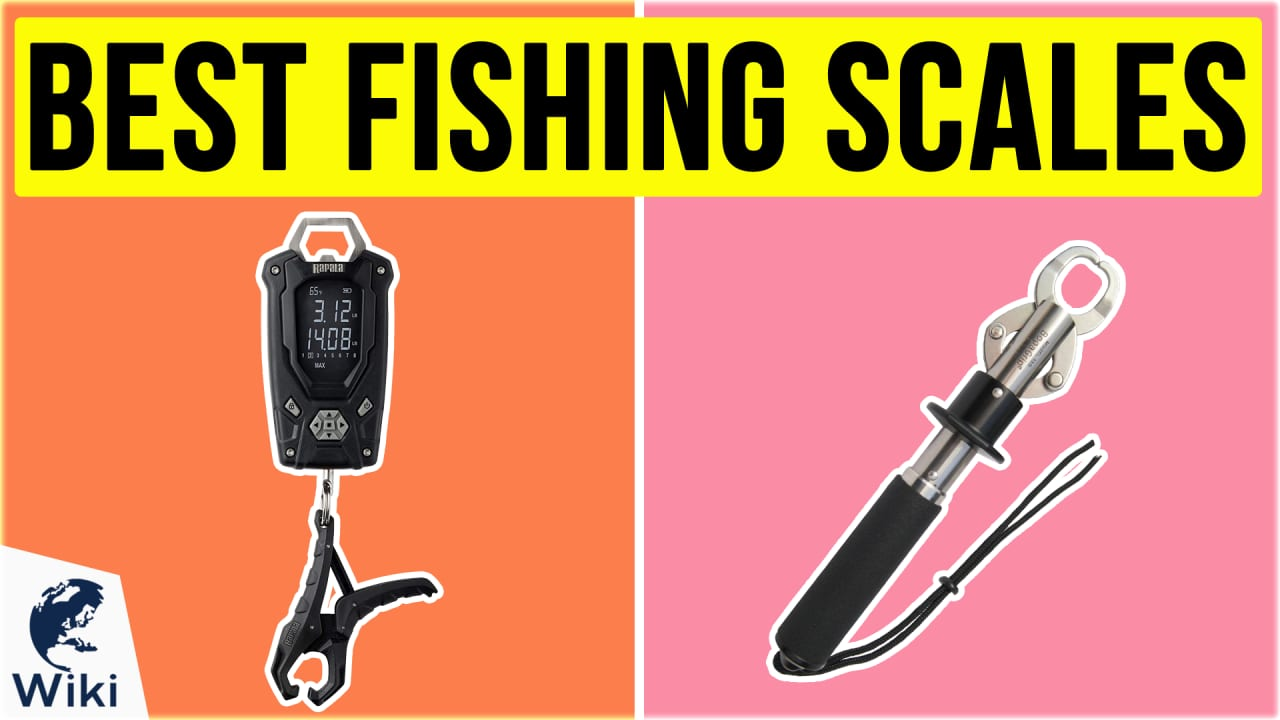 10 Best Fishing Scales
