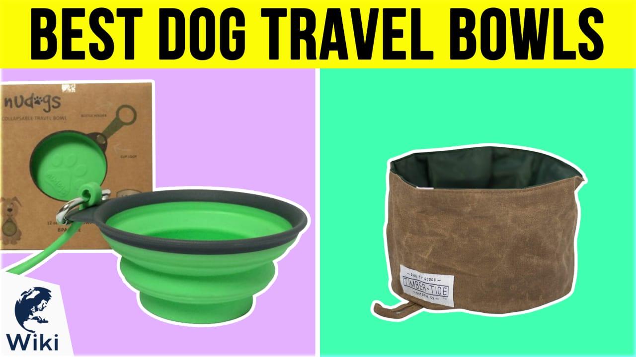 10 Best Dog Travel Bowls
