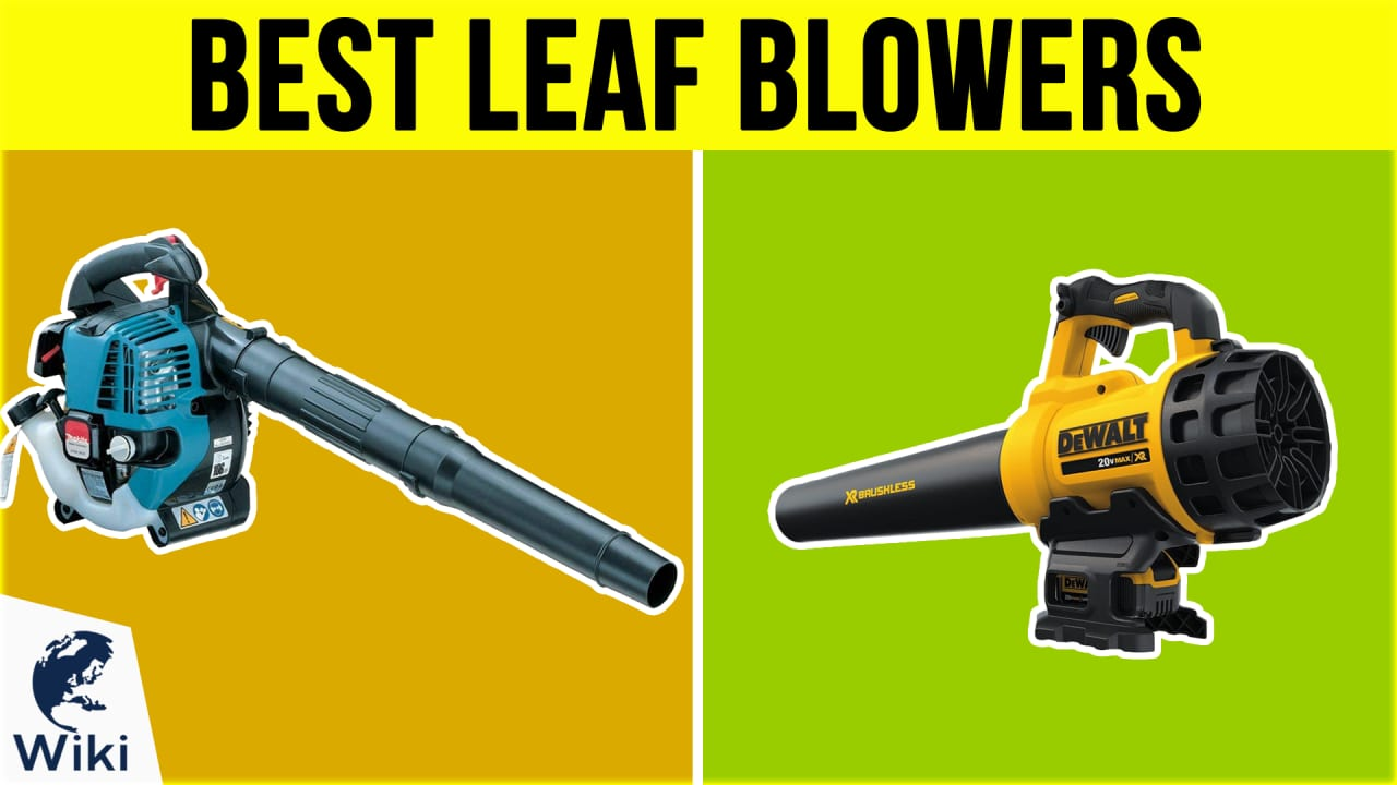10 Best Leaf Blowers