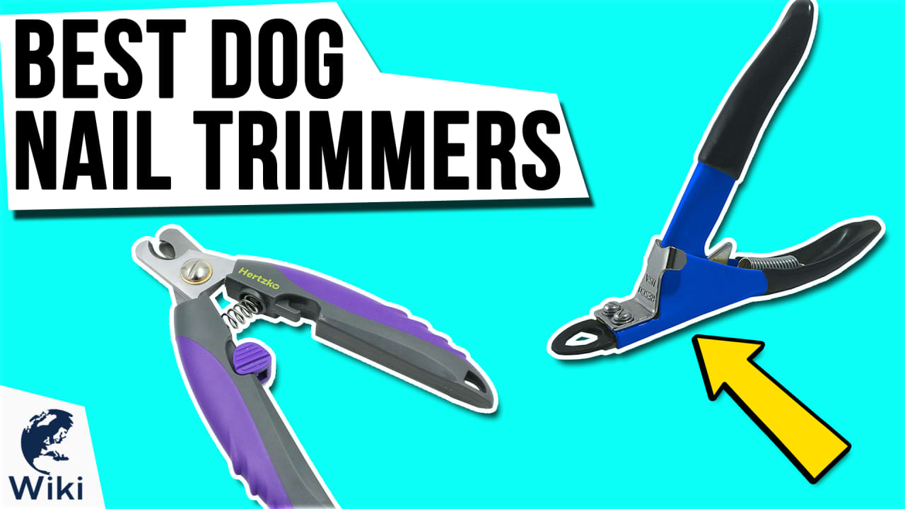 10 Best Dog Nail Trimmers