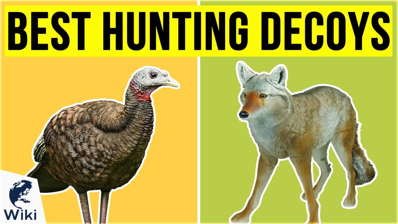 10 Best Hunting Decoys