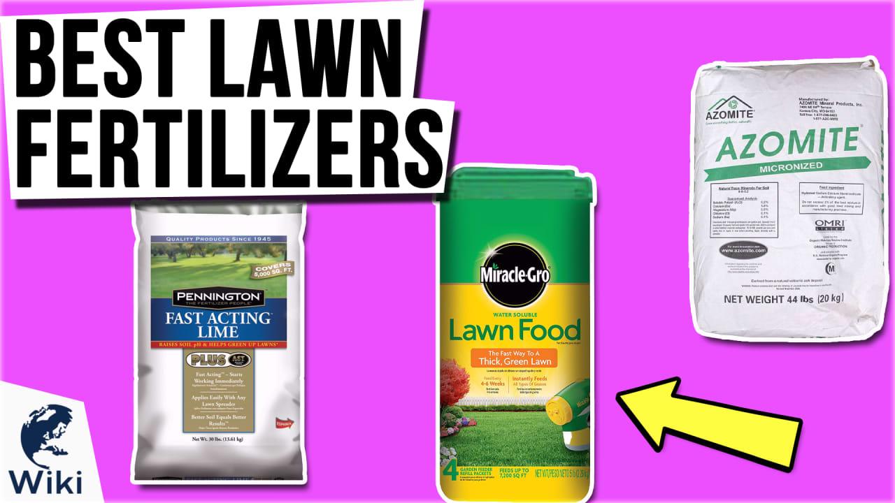 10 Best Lawn Fertilizers