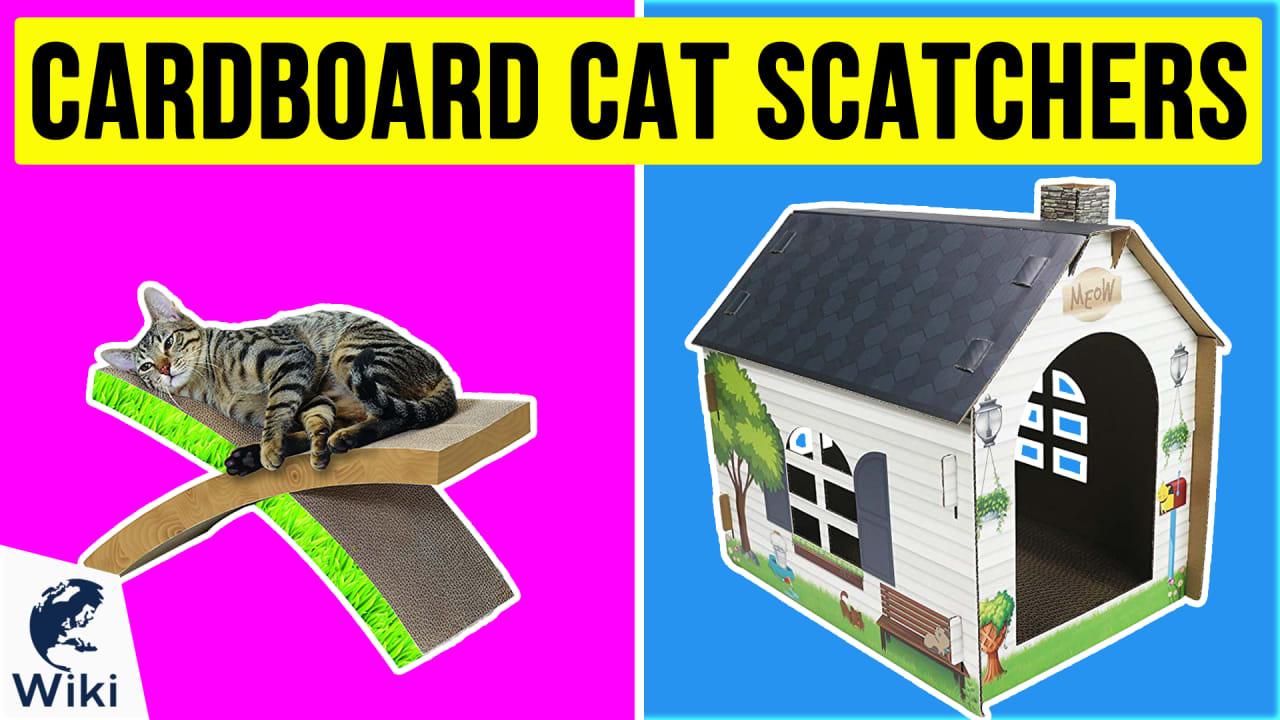 10 Best Cardboard Cat Scatchers