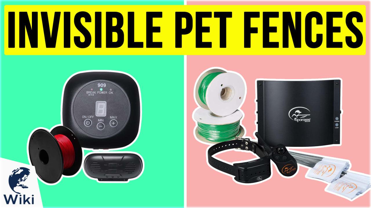 9 Best Invisible Pet Fences