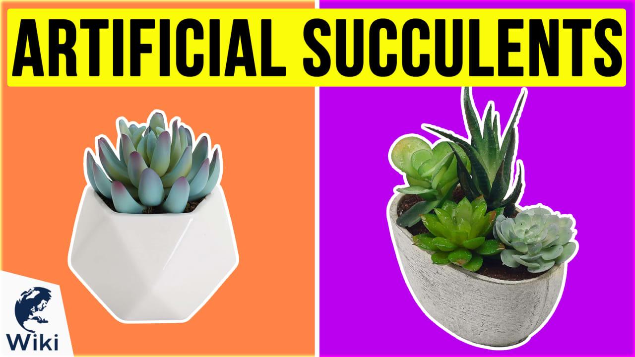 10 Best Artificial Succulents