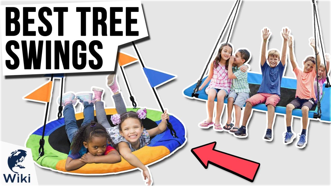 10 Best Tree Swings