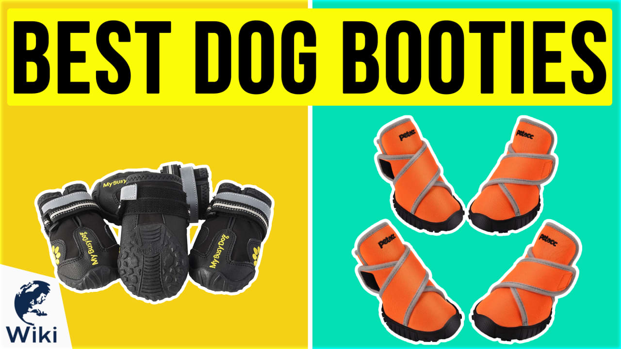 10 Best Dog Booties