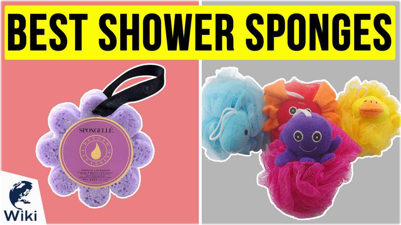 10 Best Shower Sponges