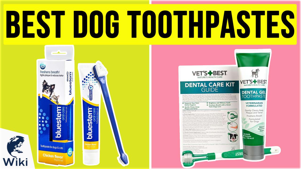 10 Best Dog Toothpastes